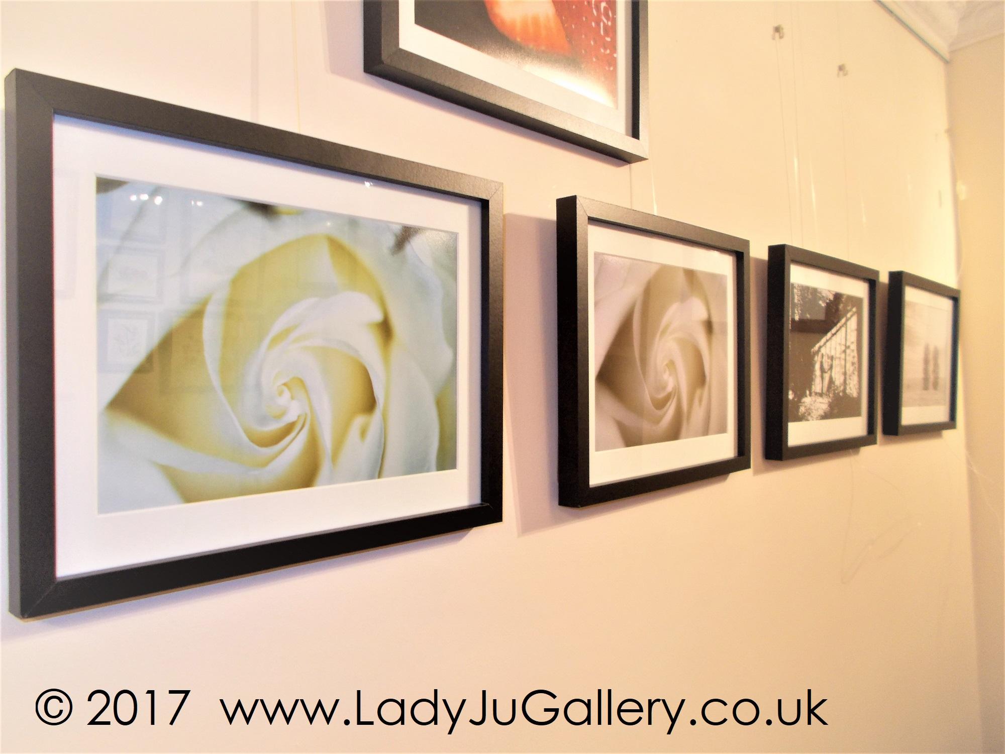 © J Kalite 2017 www.LadyJuGallery.co.uk (13)