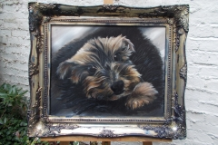 My dog bed boy tylor - jurita-oil ©