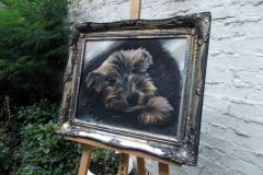 My dog bed boy tylor - jurita-oil ©2