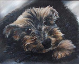 My dog Bad Boy Tyler, Jurita, 2018, oil