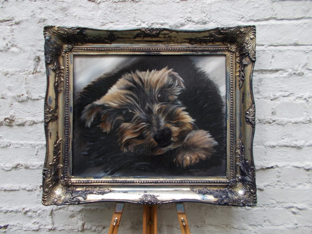 A picture containing sitting, small, dog, brown  Description automatically generated